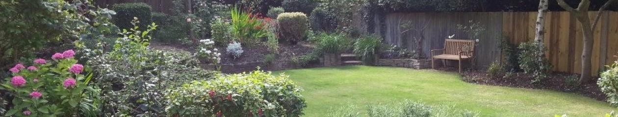 Pauls Gardening Blog
